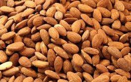 صادرات مغز بادام شیرین