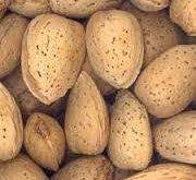 قیمت مغز بادام سنگی