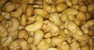 قیمت روز بادام هندی